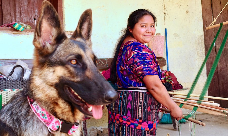German shepherd and indigenous Guatemalan artisan and handmade dog apparel
