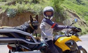 Woman and German Shepherd dog on BMW motorcycle