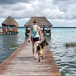 Woman and dog walk along pier towards palapa hut over turquoise water