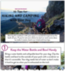 Cover image from RUFFLY's 10 Tips for Hiking and Camping with Your Dog