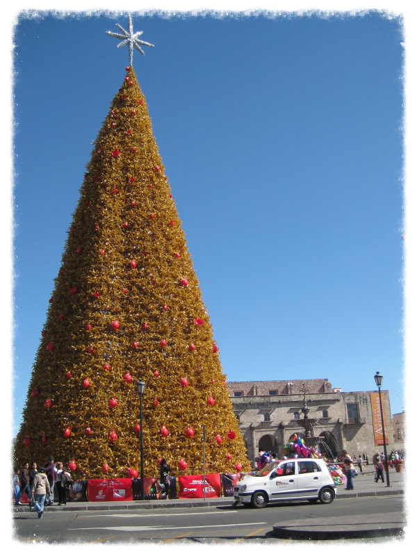 Christmas tree in Morelia