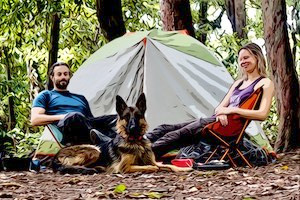 Our Seven Tips for Ruff Camping with Your Dog