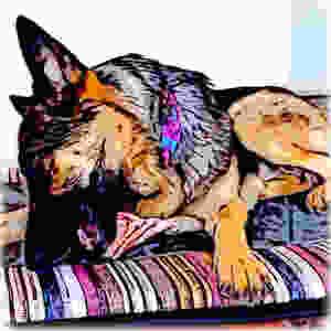 Cartoon of German Shepherd dog chewing bone on colorful handmade bed