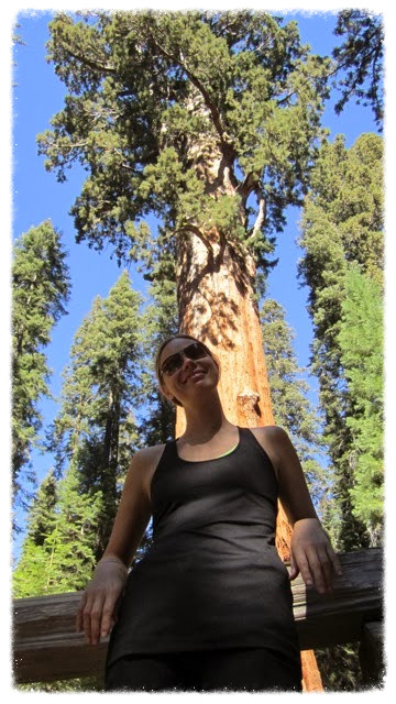 Jess with perspective at General Sherman Tree