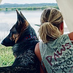 Woman and German Shepherd dog lay together looking out of camping tent
