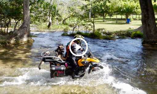 BMW G650GS with German Shepherd dog in motorcycle dog carrier rides across big river