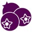 Stylized icon of purple berries