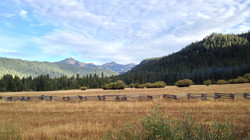 View from Childs Meadow Motel - Highway 89 east of Min