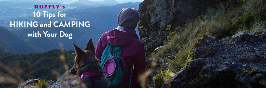 Cover photo of RUFFLY's 10 Tips for Hiking and Camping with Your Dog