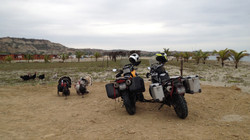 Turkeys and the girls-Zorritos, Perú