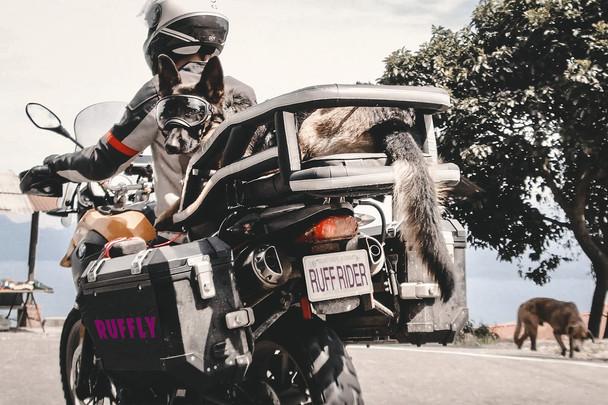 Ride Far, Ride Safe