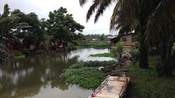 Swamps - Monrovia, Liberia