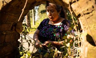 indigenous-Guatemalan-woman-artisan-hand