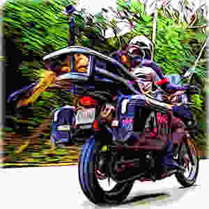 Cartoon of German Shepherd dog riding on adventure motorcycle with tail in wind