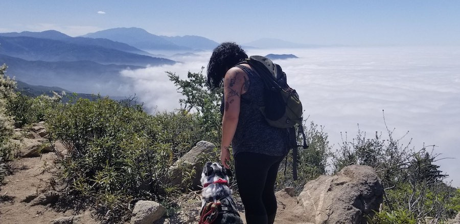 girl and dog on mountain top with view