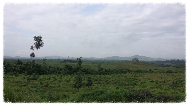 View from Monrovia-Gabarnga highway