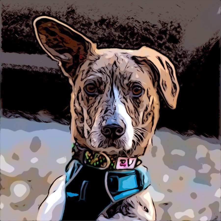 Comic cartoon brown and white dog with one ear raised