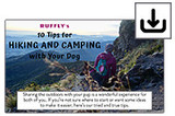 Icon of downloading camping with dog tips