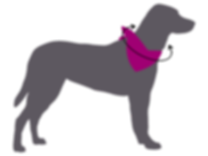 Silhouette of grey dog wearing pink bandana with black measurement arrows to determine collar size