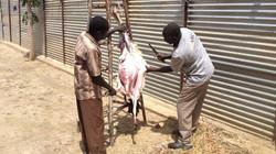 Charles Juma skin goat - South Sudan