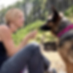 Woman feeds raw food treats to hungry German Shepherd wearing colorful, handmade bandana
