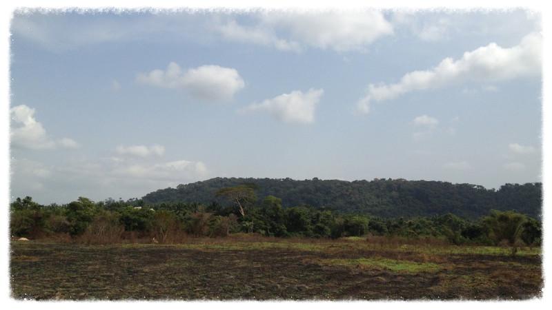 Landscape at Kpatawee