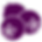 Simple icon of huckleberries in purple