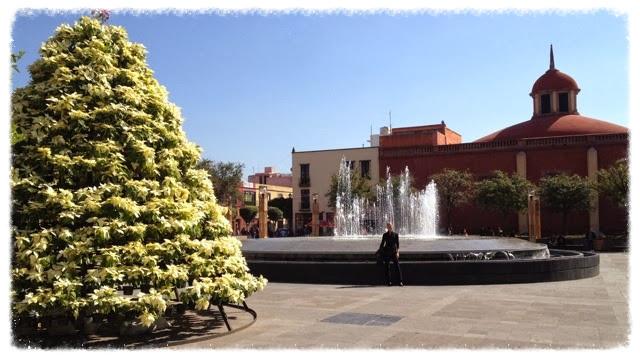 Jess in the Querétaro plaza