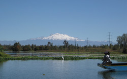 Volcán Iztaccihuatl-Reserva Ecológica