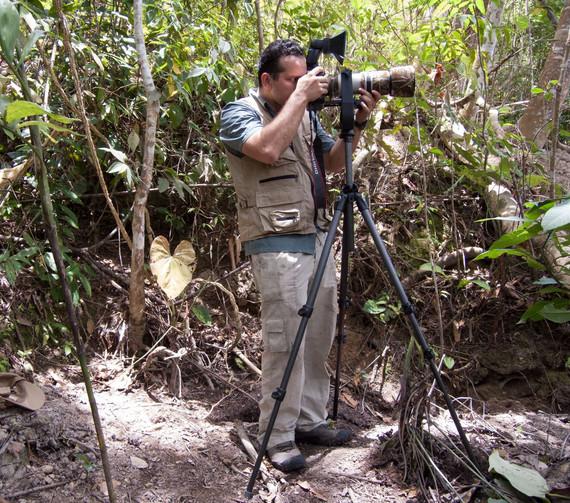 Fotografiando en el bosque