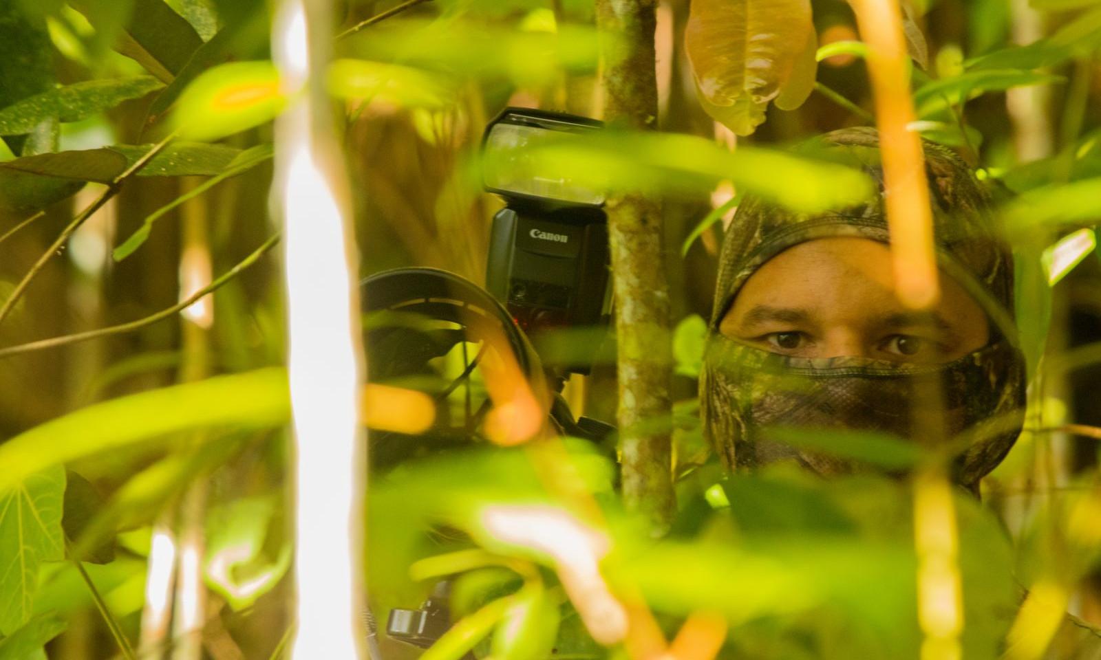 Esperando pacientemente para fotografiar el Rhodinocichla rosea