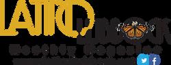 LLM Logo Website
