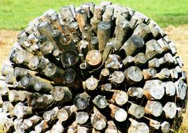 Skulpturen Riedholz 1a.jpg