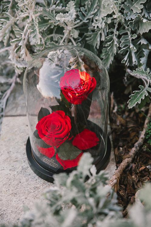 Πολυτελή γυάλα με 2 Eternity Roses