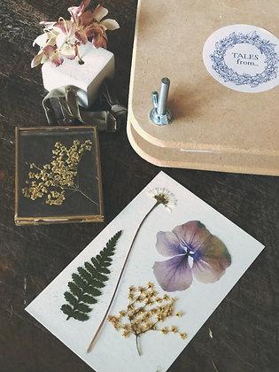 Mini Flower Press Gift Set