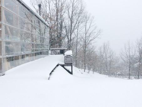 今朝のみずたまカフェ【大雪が降った】編