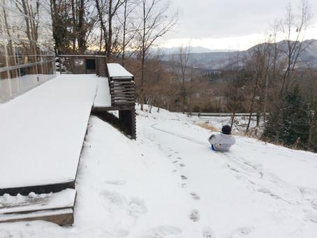 この冬初の積雪です