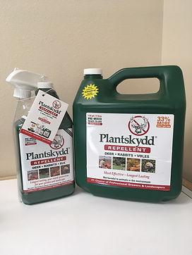 plantskydd1.jpg