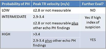 PH echo diagnosis.jpg