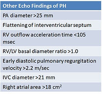 Echo Findings of PH.jpg