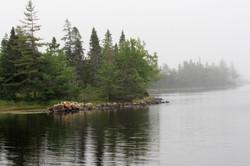 Porter's Lake shore