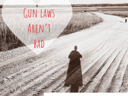 Common Sense is Good: Gun laws aren't bad