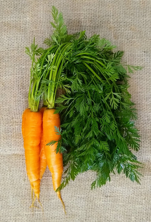 Cenoura orgânica  (500g)