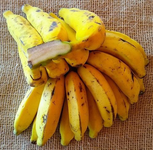 Banana prata orgânica (500g)