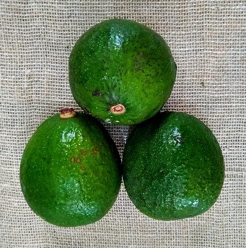 Abacate orgânico (700g)