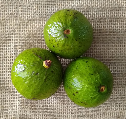 Abacate orgânico (400g)