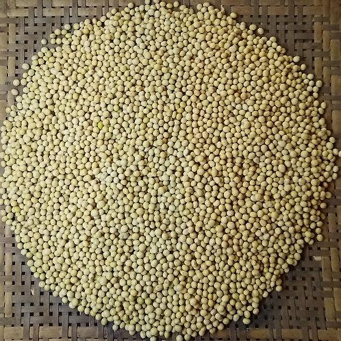 Soja em grãos orgânica (500g)