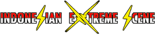 a fix ies new logo.png