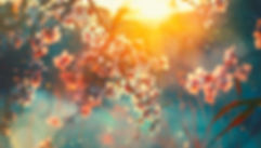 xsounds-of-spring-banner.jpg,qrev=37A8,a