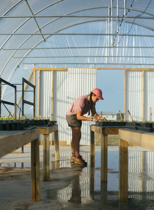 Electric Install H2Grow Greenhouse in Paige